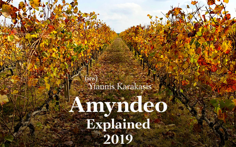 Yiannis Karakasis MW Amyndeo report 2019 the likker