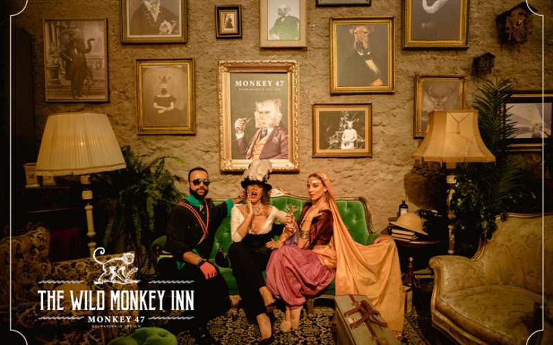 the wild monkey inn monkey47