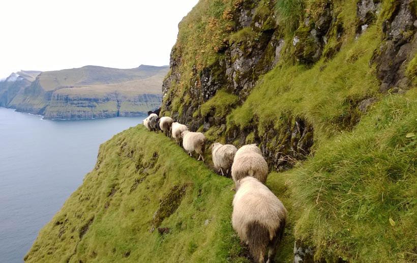 Faer Isles